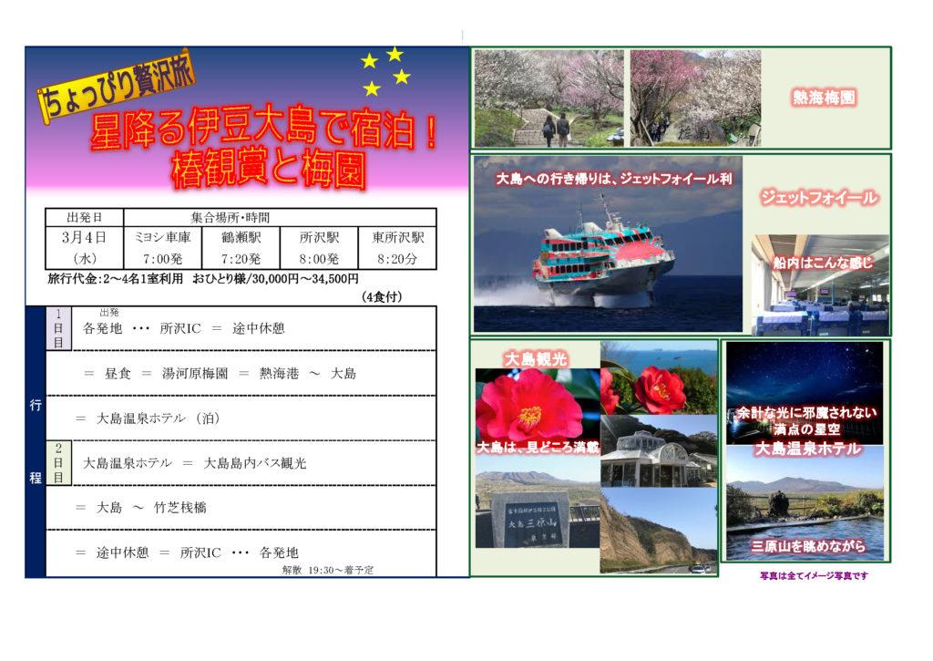 星降る伊豆大島で宿泊! 椿観賞と梅園